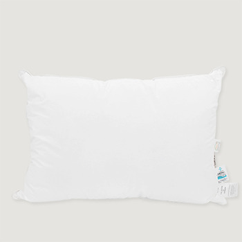 poland goose down pillow