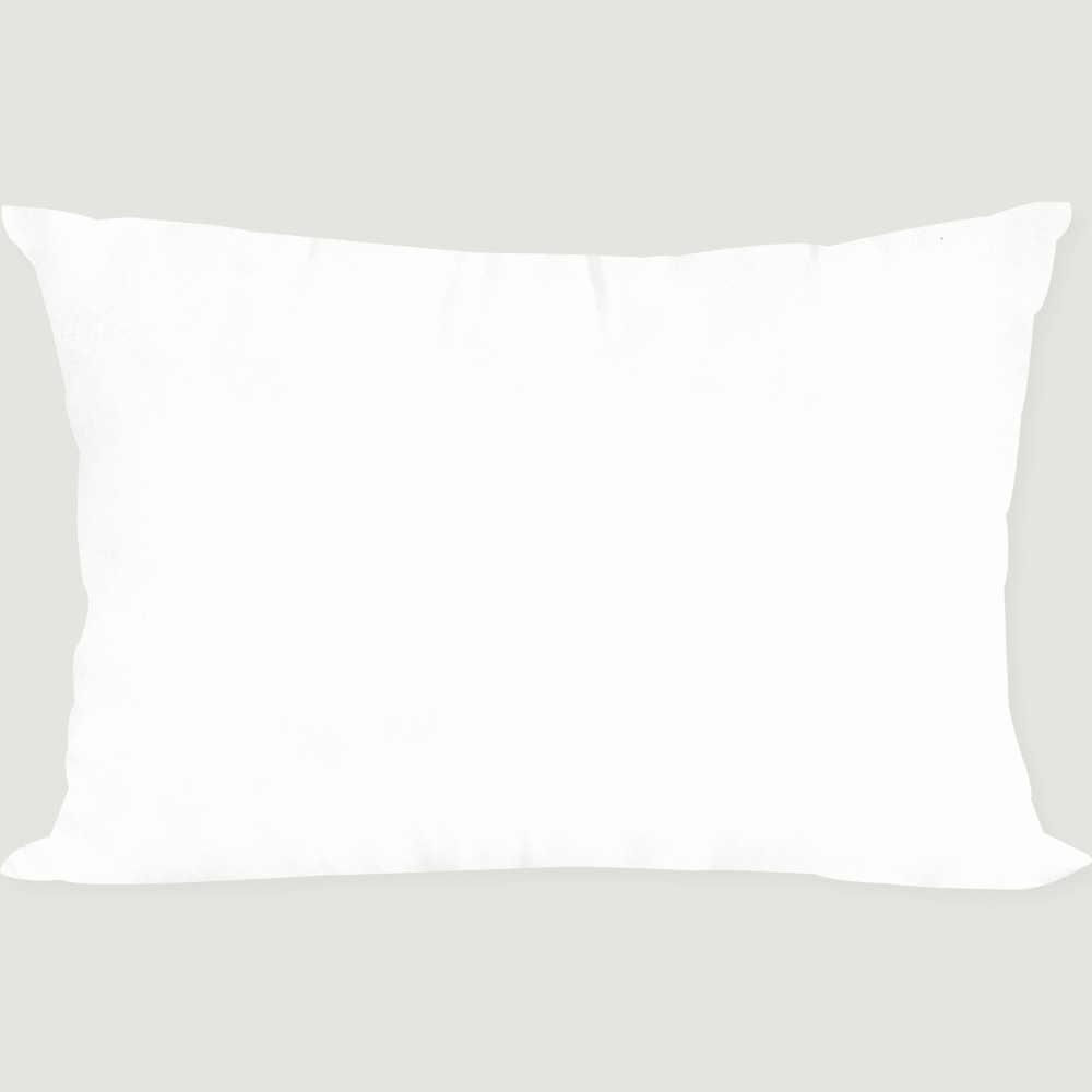 Poland Goose Down Pillow 50X70 (솜)